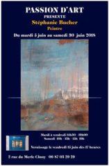 Exposition de Stéphanie Bucher dans la Galerie passion d'art à Cluny 3.06-30.06.2018
